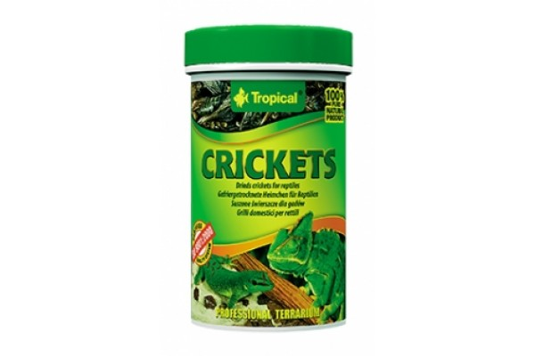 Tropical Crickets 100ml/10g Dobozos