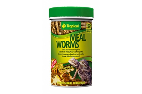 Tropical Meal Worms 100ml/13g Dobozos