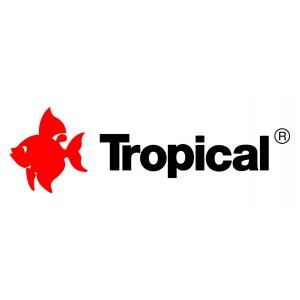 Tropical haltápok