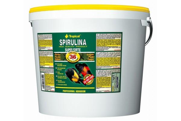 Tropical Super Spirulina Forte Gran. 5L/3kg Vödrös
